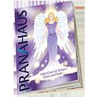 PranaHaus PranaHaus-Katalog - online