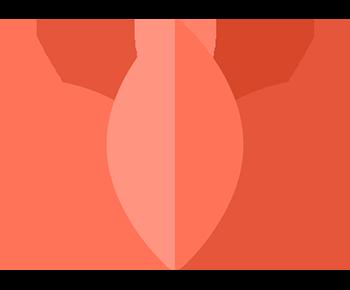 Grafik einer orangefarbenen Lotusblume